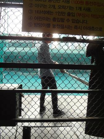 Insadong : Baseball cages