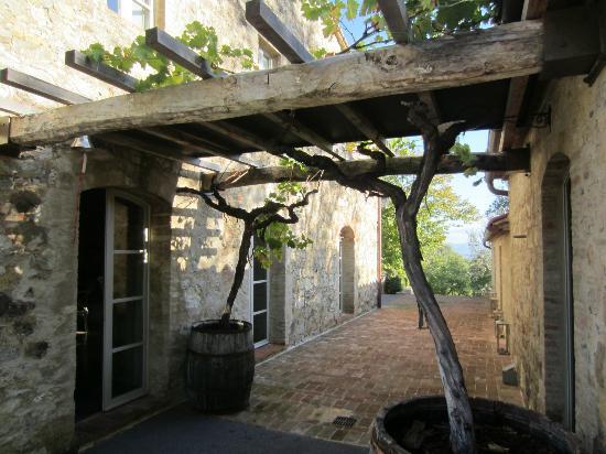 Agriturismo Casa Fabbrini: Lovely Casa Fabbrini