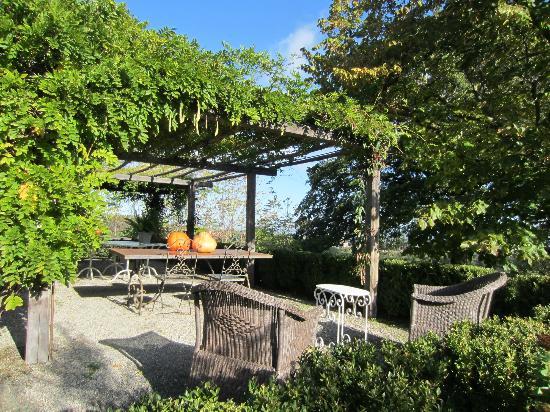 Agriturismo Casa Fabbrini: Garden