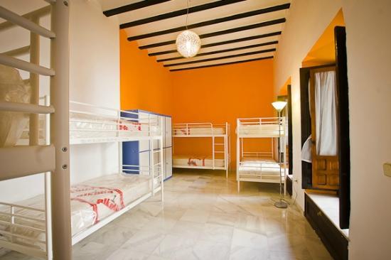 Trotamundos Youth Hostel : DORMITORIO