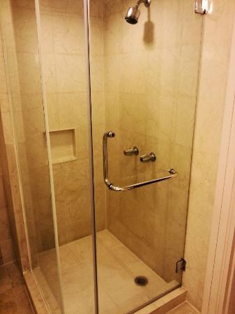 โรงแรมแกรนด์มิลเลนเนียม กัวลาลัมเปอร์: Shower room. Big water current.