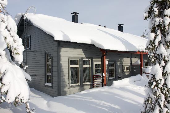 Ski-Inn MastonAitio Mökit