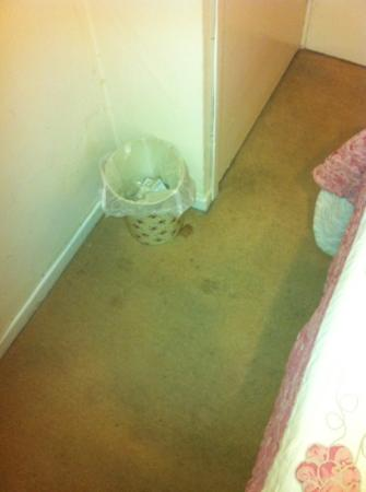 Cambridge Villa Hotel: more stains on dirty floor