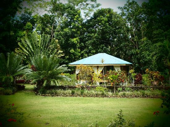 Nypa Style Resort Camiguin: Blue Cottage