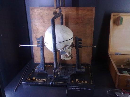 Museo di Antropologia Criminale Cesare Lombroso