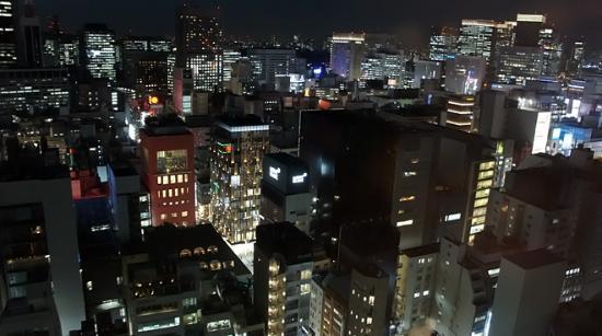 Mitsui Garden Hotel Ginza Premier: 21階からの眺め(山の手側)