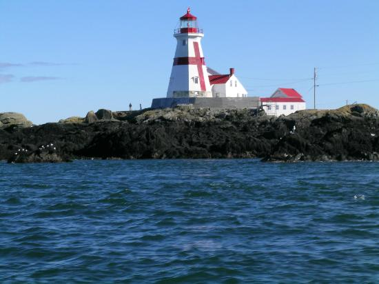 Downeast Charter Boat Tours: Head Harbor lighthouse seen from boat Lorna Doone