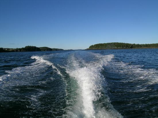 Downeast Charter Boat Tours: Speeding to our destination