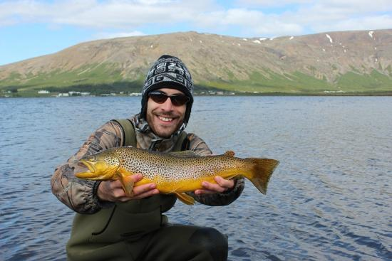 Hard fighting fish picture of go fishing iceland for Fishing in iceland