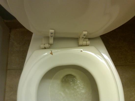 Microtel Inn & Suites by Wyndham Baton Rouge Airport: Bathroom toliet seat - broken