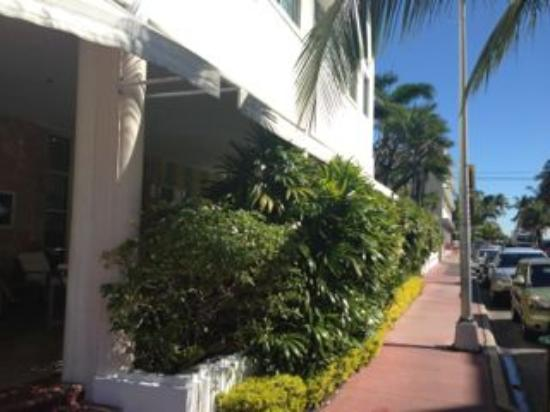 The Hotel of South Beach: Entrance View of 8th Ave looking towards the Beach