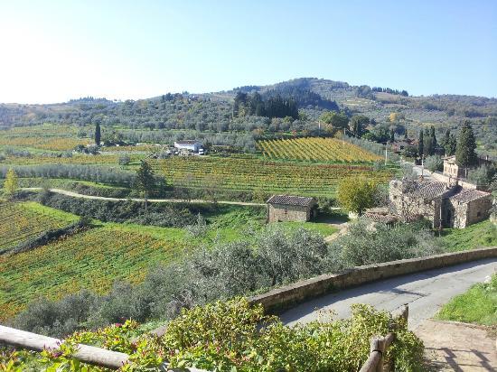 Taverna Del Guerrino : View from Restaurant
