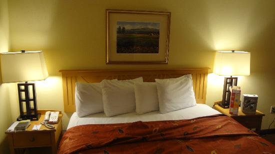 Econo Lodge Riverside: King bedroom