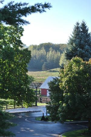The Inn at Black Star Farms: The Farm