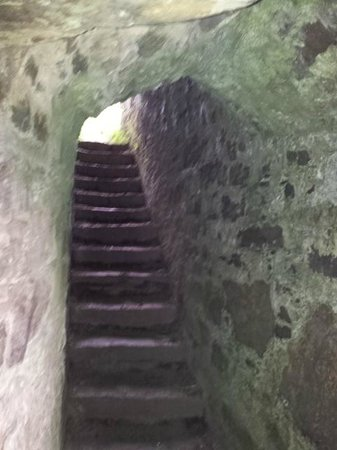 James Fort: One of the Tunnels