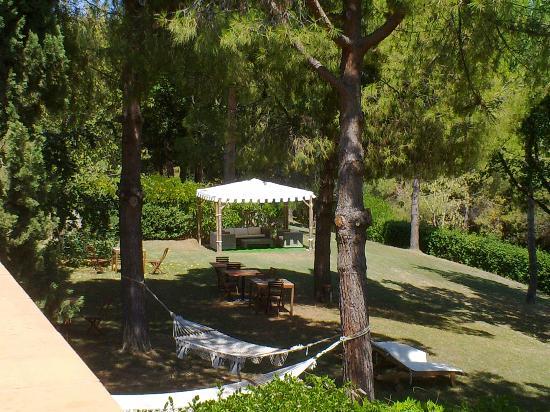 Colle Moro Resort - B&B Villa Maria: Parco con Pini