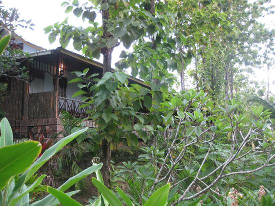 Sepilok Jungle Resort: balcon vu du jardin