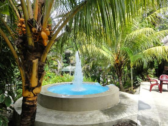 Ceiba Tops Lodge by Explorama: The Jaccuzi