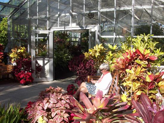 Foster Botanical Gardens: Great greenhouse collection