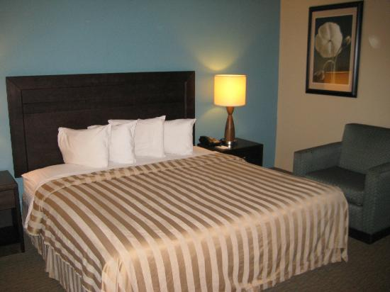 Quality Inn Flamingo Downtown: guestroom