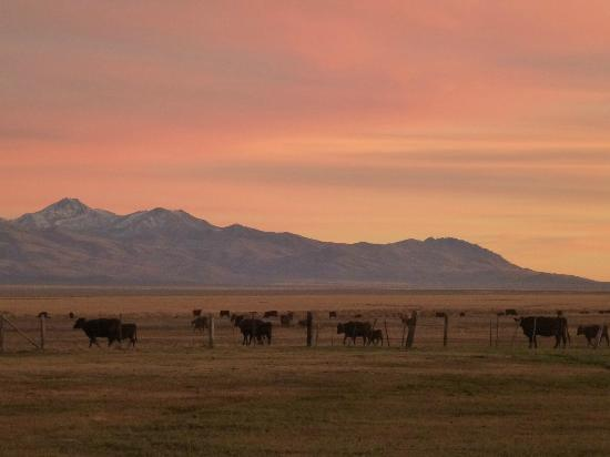 McDermitt, NV: This is Ranch Country. Santa Rosa Range to the East