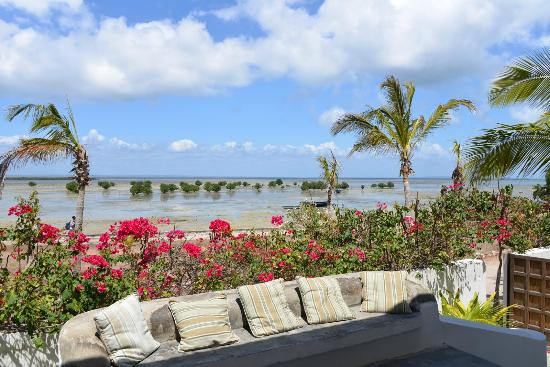 Ibo Island Lodge: at low tide