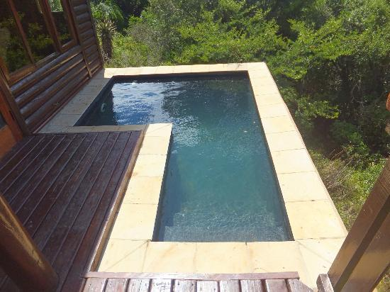 Kariega Game Reserve: plunge pool