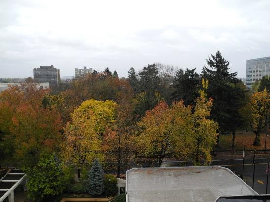 DoubleTree by Hilton Hotel Portland: Park across the street