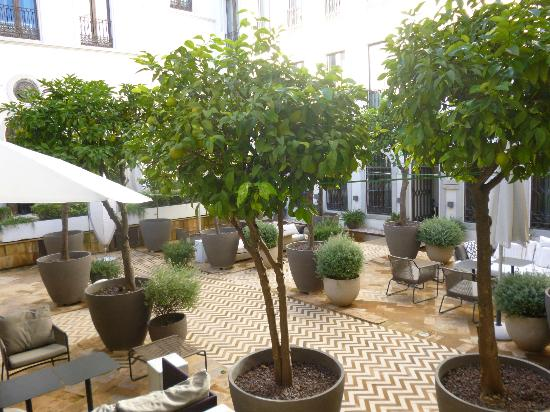 Hotel Palacio de Villapanés: The relaxing courtyard and orange trees.