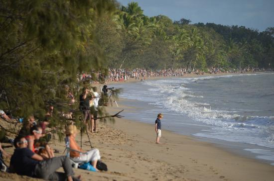 Elysium Apartments: Palm Cove beach on the early morning of the eclipse (Nov 14, 2012)