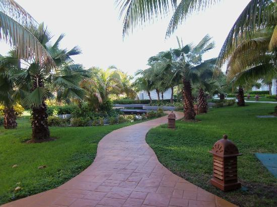 Iberostar Rose Hall Beach Hotel: walkway to pool
