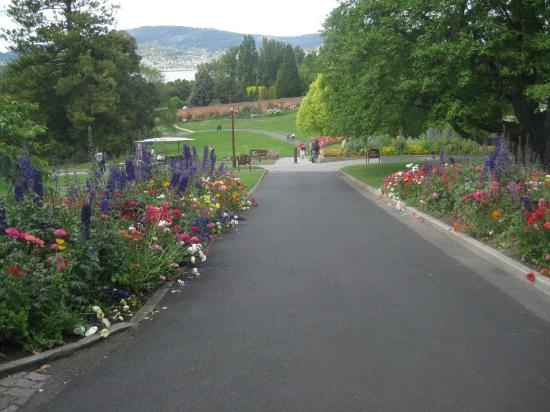 Royal Tasmanian Botanical Gardens: main path