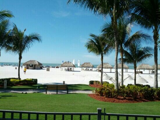 JW Marriott Marco Island: View from Pool Area