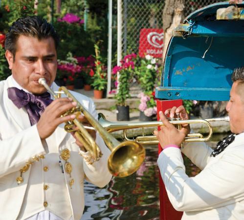 Amigo Tours Mexico City Reviews