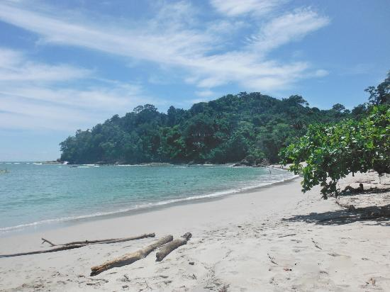 Cuchi Transfers and Tours: Manuel Antonio National Park