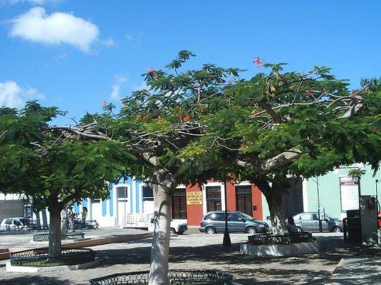 Yucatan, Mexico: Parque De Santa Lucia