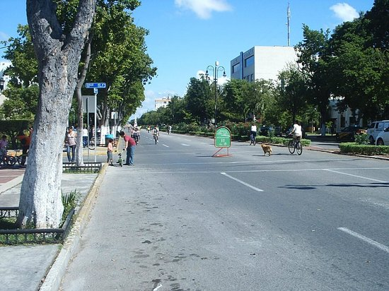 Yucatan, Mexico: Paseo De Montejo - NorthBound on a Sunday