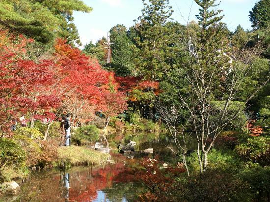 Mt. Wakakusa: (参考)円成寺の庭園