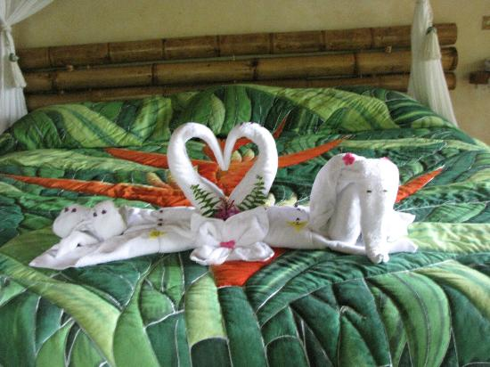 Lost Iguana Resort & Spa: The beautiful work of the maids