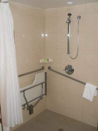 Albert at Bay Suite Hotel: shower area