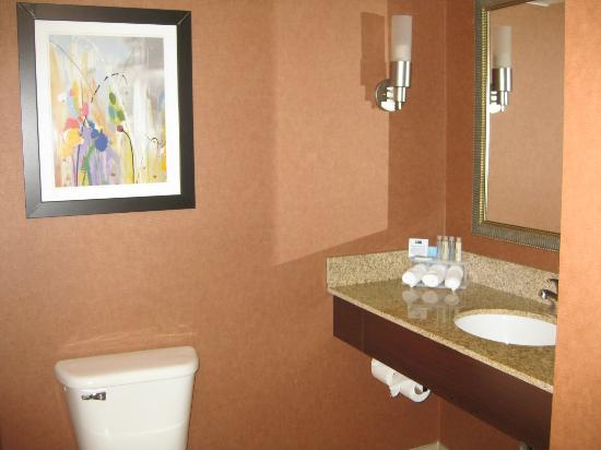 Holiday Inn Express & Suites Manassas: Bathroom