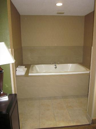 Hampton Inn Port Huron: Whirlpool in its own cozy alcove, not in the middle of the bedroom like some of the others