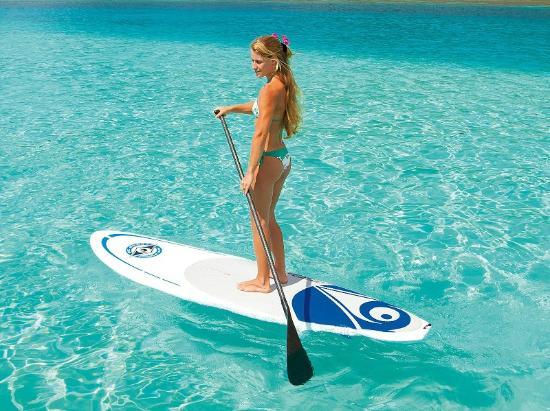 Delmarva Board Sport Adventures: Rentals and Lessons