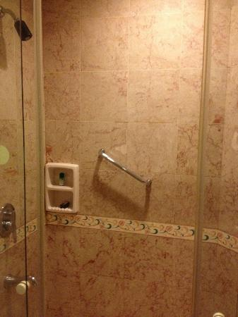 The Residency Towers: marble shower with double sliding doors