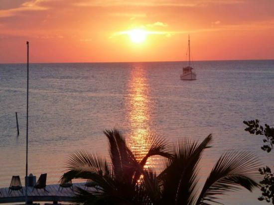 Iguana Reef Inn: sunset from my room