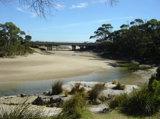 Crayfish Creek, Australia: Creek Low tide
