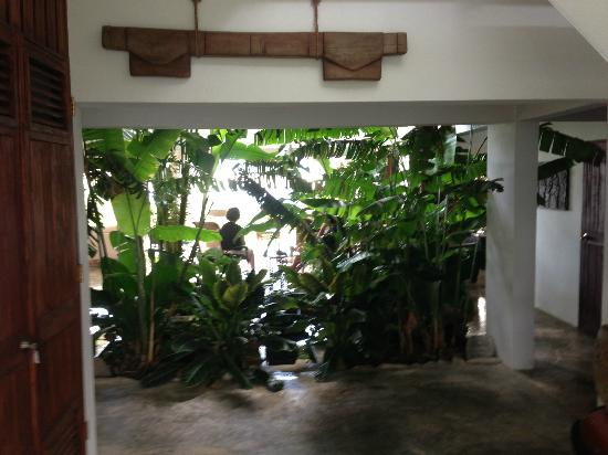 El Hotelito at the Rainforest Experience Farm: View toward the open air main floor