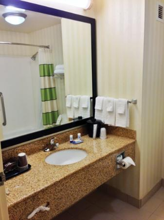 Fairfield Inn Asheville Airport: Bathroom