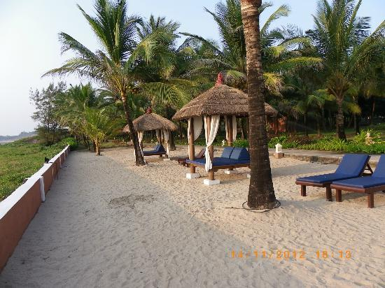 Overlooking The Beach Picture Of Blue Ocean Resort And Spa By Apodis Malgund Tripadvisor