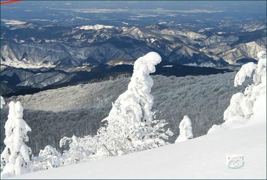 Ani Ski Place: gankanioogatamura